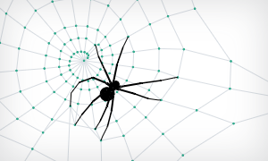 Spiderweb example
